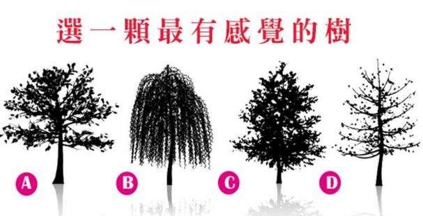 【測驗】選一棵你「最有感覺的樹」,測你內心最離不開誰!