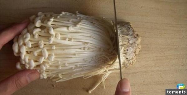 原來大家切金針菇的方法是錯的!「正解」真的太好用了!快分享出去!