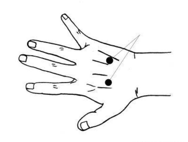 手上有處穴,專治頸痛腰痛,只按1次就見效,按過的人人都說神!
