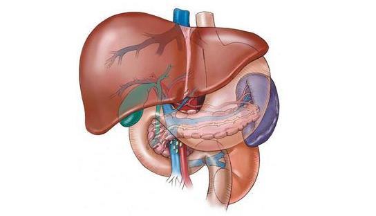 可怕的肝硬化上了你的身?教你一個方法,把肝臟養的「軟」回來