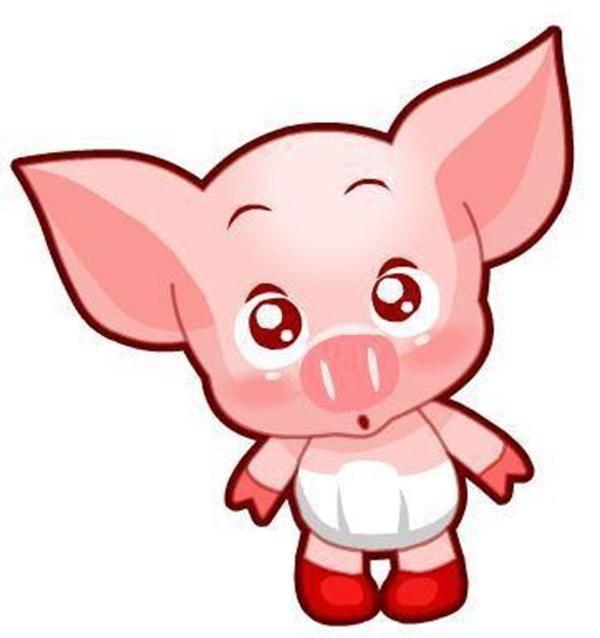 七,生肖猪