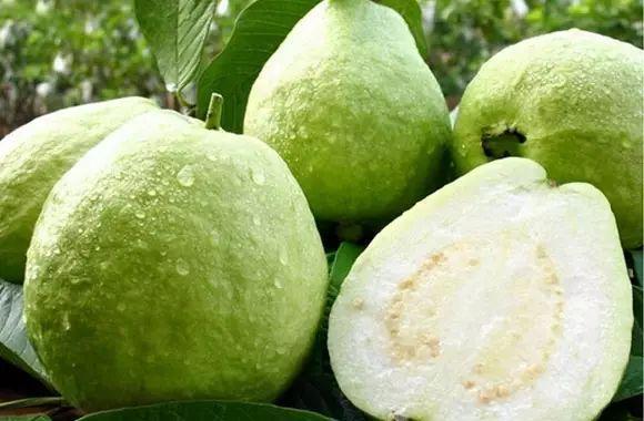 這種水果最好連籽吃下去!降糖養顏抗衰老!可惜很多人不知道