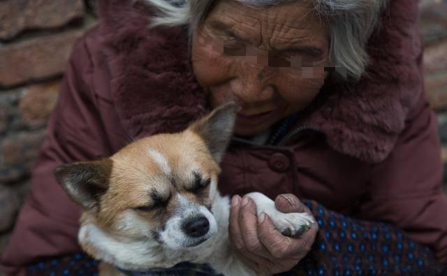 母親年邁遭兒媳白眼,暈倒家中與狗相伴,鄰居偶見一幕感慨萬千