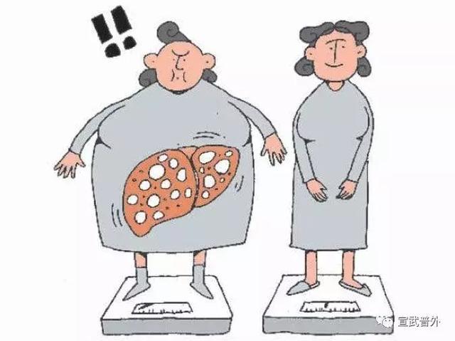 晚餐與體重和壽命的關係,嚇得我住嘴了