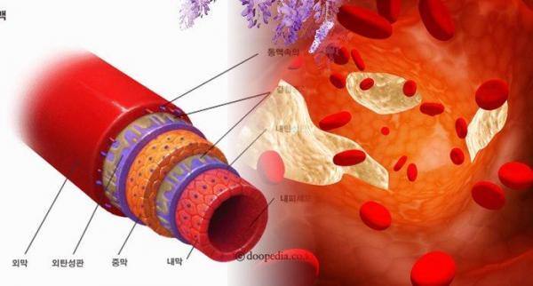你知道嗎? 6 種「方法」能夠幫血管洗澡,讓你的血管回到 18 歲般強健...