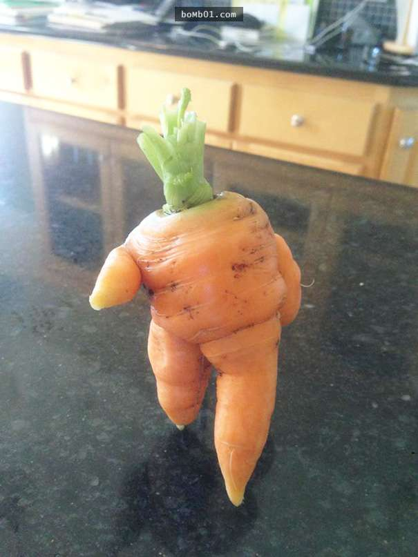50張證明Cosplay的力量已經默默蔓延到蔬菜水果身上的照片。