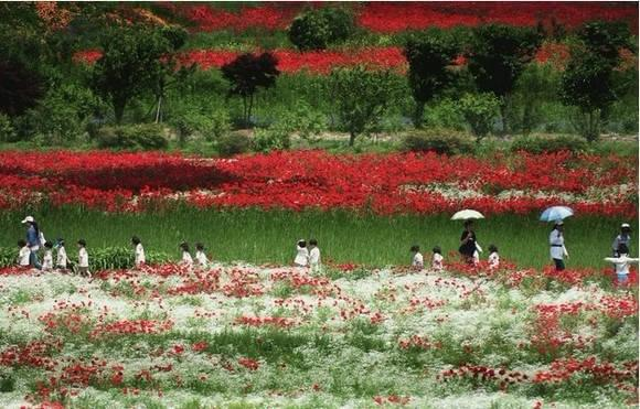 顛覆你的韓國印象,被上帝私藏的小眾美景