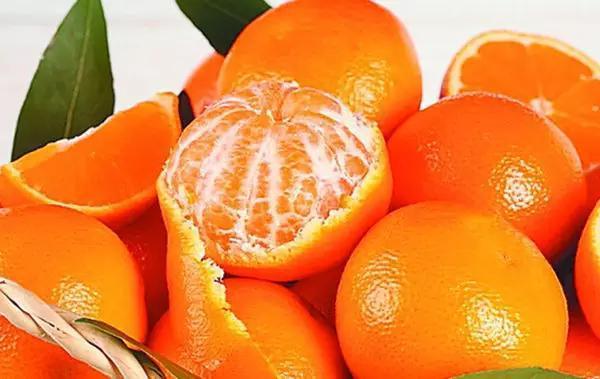 終於分得清橘、橙、柑、橘了!