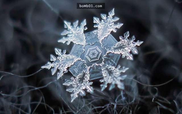 ▼大部分雪花都有六瓣,但结晶模样并不一样.