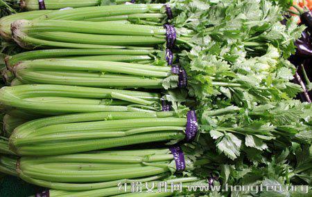 生活中芹菜的六大食療功效和三個品種
