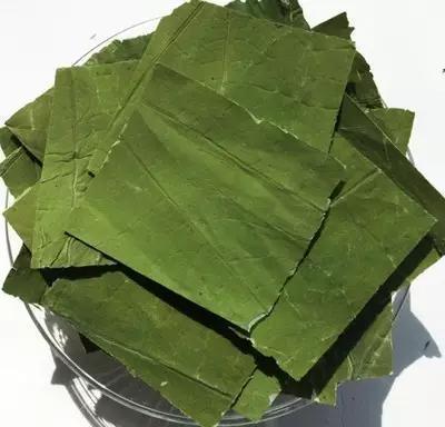 三款非常天然的綠色減肥食譜!