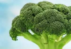 美國列出10種最健康食物,比吃啥補藥都好使,今年一定要吃全!