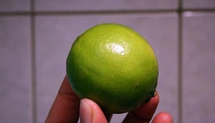 一顆檸檬拯救體重和顏值!可惜99%的人不知道一顆好的檸檬該如何挑選!