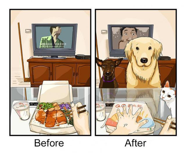 晉升鏟屎官前後(養狗前與養狗後)的日常生活對比