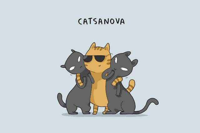 一樣飼料養百樣貓!你家貓董是哪種?。