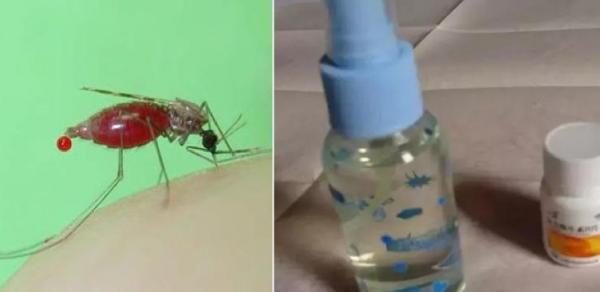 天氣熱了,趕快做一瓶高效無毒的驅蚊水,而蚊子非常討厭這個味道,噴在身上