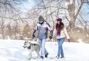 養寵知識——養犬對我們的6大好處