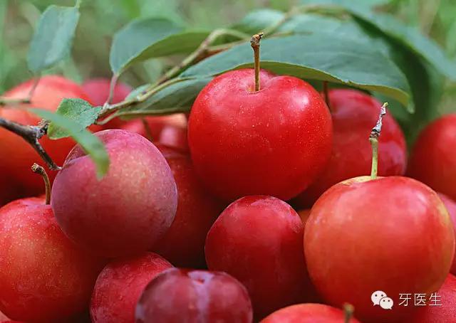 孕婦不宜多吃的八種水果!