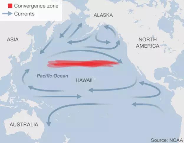 這個少年破世界紀錄,輟學,花10年清理半個太平洋!最後竟然賺了128億....