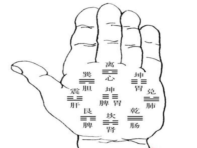 從手指判斷自己健康指數,不相信我們可以一起來看