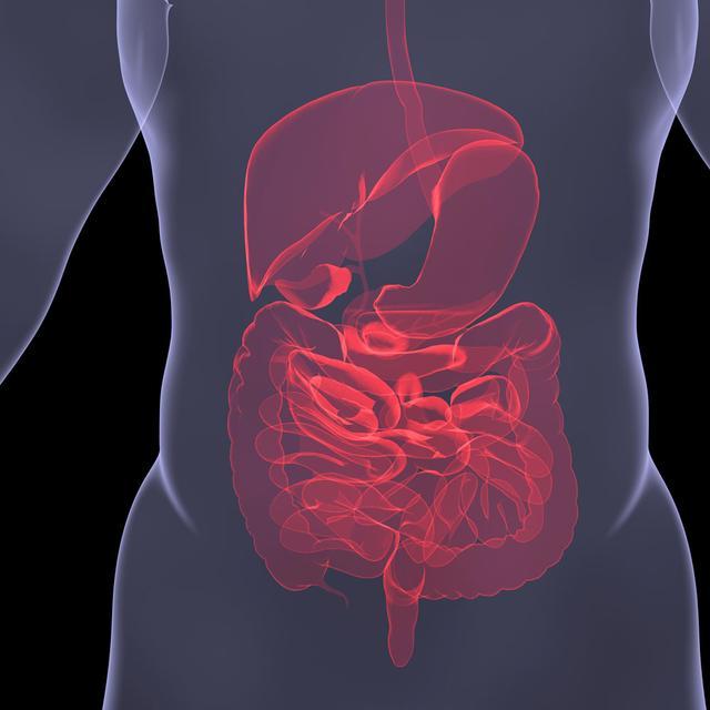 要想長壽,先得「腸壽」!9種「排毒」食物現在吃還不晚