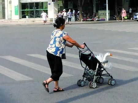 婆婆帶兒媳看「不孕」 理由讓醫生哭笑不得
