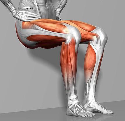 坐住都可以瘦到? ! 每日坐一坐即減下半身+鍛鍊膝部~穿短褲的日子不遠了哦…