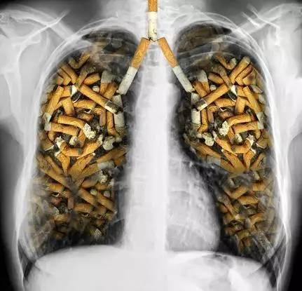 每天一包煙,你的身體會發生哪些變化?