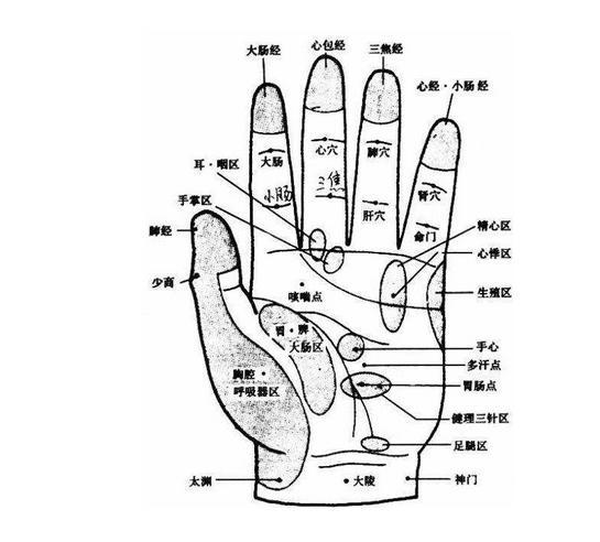 手部按摩步骤图