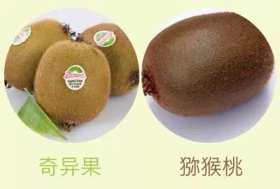 這4類水果做的果泥,會傷害到寶寶,一定要注意!
