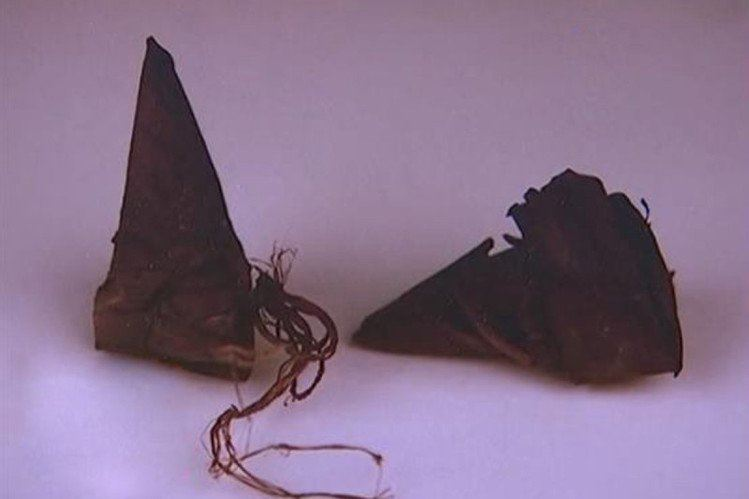 太狂了!700年前「世界上最古老粽子」原來長成這樣.....宋朝古墓內找到的:好尖喔