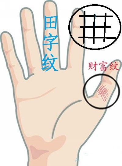 手「大拇指」有這3個好「紋」,不富則貴祖業興,一生享受在命中