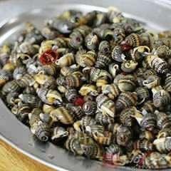 米缸裏放了它,就算放一年大米也不生蟲!持久保持新鮮! 超實用!