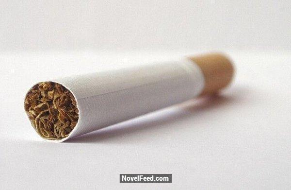 速傳!千萬別再說「香菸傷身」90%的人都搞錯了!沒想到香菸的背後竟隱藏著「這種功能」快拿出你的香菸看一看....