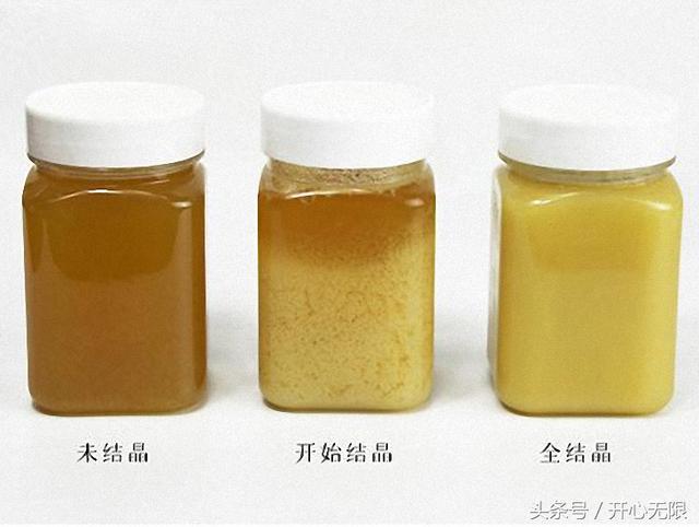 假蜂蜜別再喝了!68歲良心老蜂農教你「一杯清水」鑑別真假蜂蜜