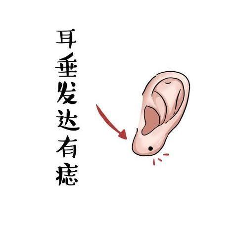 最有福氣的3種耳朵,一看就是當官的料,有錢的樣!