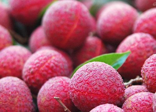 這7種水果可以幫助腎結石快速排出?快分享給有用的人