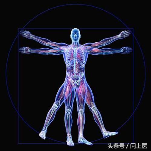 嚇人!人體的這個器官居住著數以萬億計的細菌,你卻不知道?