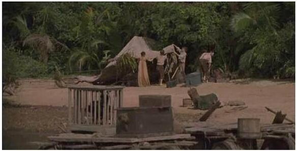 1男和12女流落荒島,他娶了其中一女,但又不滿足想染指其餘11人,最後他的下場太慘了!