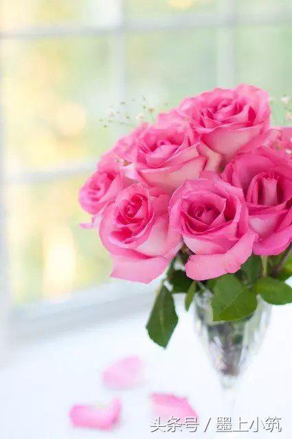 活在當下,過好每一天,開心快樂一世,健康快樂一生!