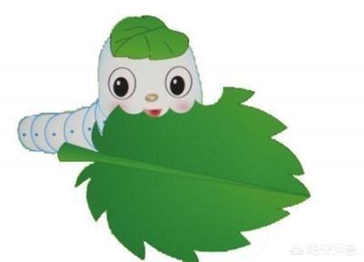 春天來了,為什麼很多城裡人去農村採桑葉吃?好處多多