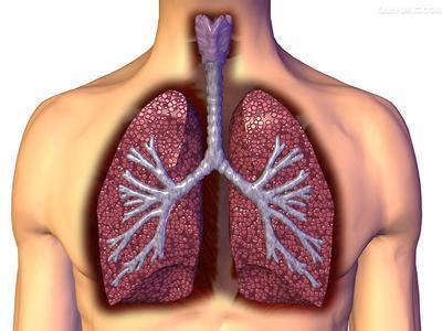 肺熱、痰多咳嗽,家裡要常買這7種食物吃,趕緊收藏備用吧