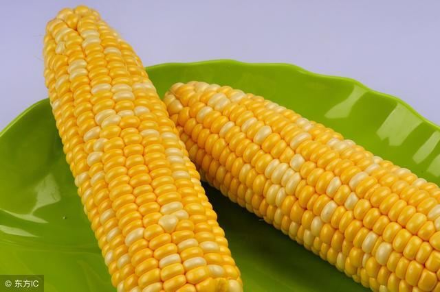 吃玉米的好處很多,但醫生卻說,這5大食用玉米的禁忌不可忽視