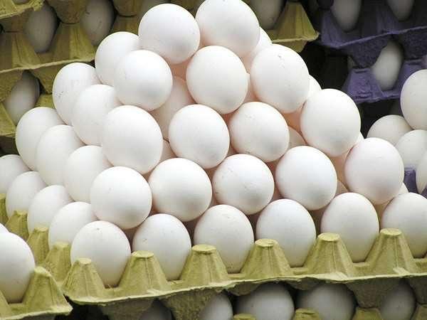 早上愛吃「雞蛋」的人要注意了!現在知道還不算太晚,快讓身邊的人知道重要性!!!!!!!