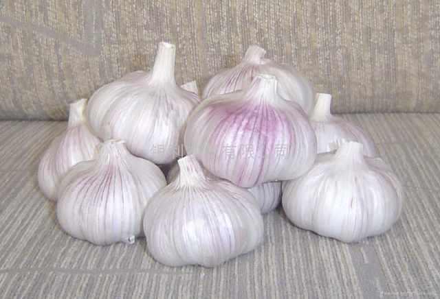 大蒜有幾百個好處,,唯有這一點,太多人不知道!