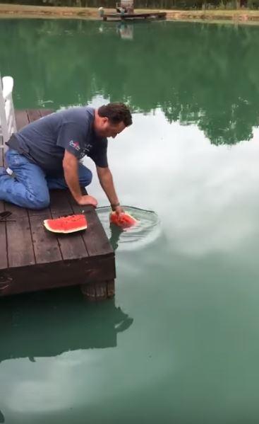 他異想天開「徒手用西瓜釣魚」,被笑太傻「下一秒不可思議現象」全部人嚇翻!