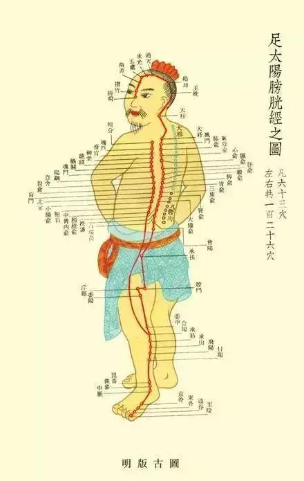 這條經絡是身體上最大的「排毒」通道,經常拍一拍,增強抵抗力!