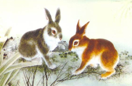 """""""属兔""""的图片搜索结果"""