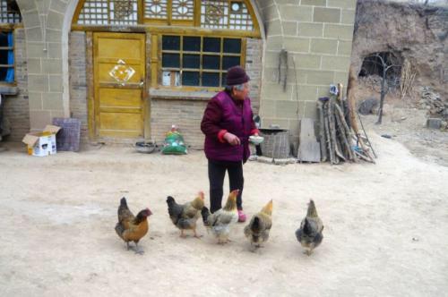 母親臨終分財產,先給兩兒每人一隻雞,三日後卻把財產都給小兒