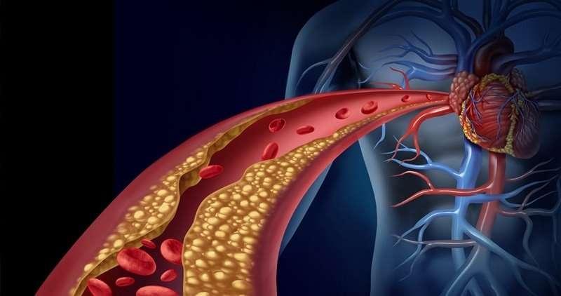 每天吃一顆,不用裝支架,血管刷得超趕緊,不僅營養豐富,而且還具有提高免疫功能,降血壓、血糖、防癌等保健功效